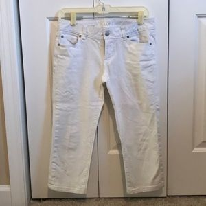 Loft white modern crop pants
